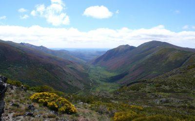 Salce – Alto de la Cañada (2.157 m.) – Peña de Piquera (2.069 m.) – Pico Formigones (2.066 m.) – Peña Correa (2.067 m.)