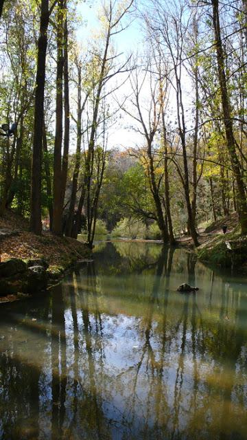 Fontibre – Nacimiento del Río Ebro – Ermita de las Cagigalas – Hayedo de la Guariza