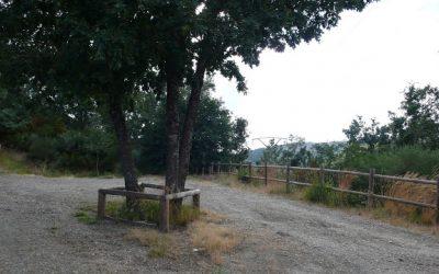 Requejo de Sanabria – Bosque del Tejedelo