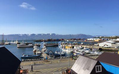 Húsavík – Avistamiento de ballenas