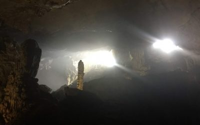 Hạ Long – Sung Sot (Surprise) Cave