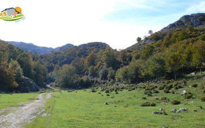 Jito de Escarandi – Refugio Casetón de Ándara – Monte La Llama – Vao de los Lobos – Hayedo de Valdediezma
