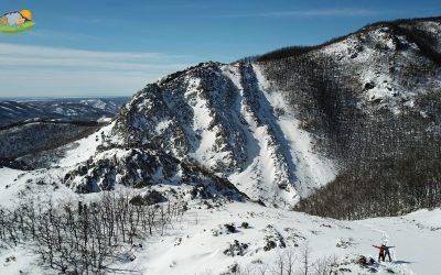 Aviados – Robledal de Sierras Blancas