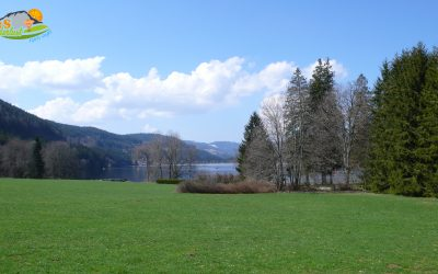 Titisee – Eisweiher