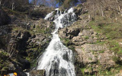 Todtnau – Todtnauer Wasserfälle – Todtnauberg