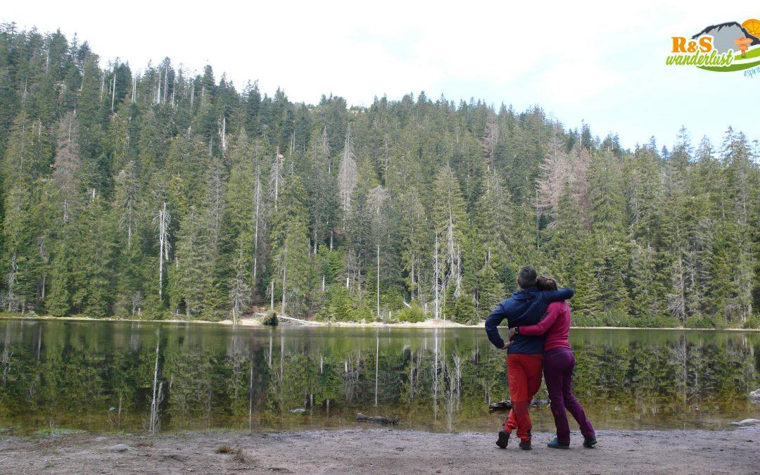 Ruhestein – Wildsee