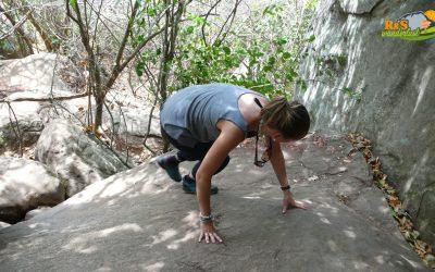 Pidurangala Rock (348 m)
