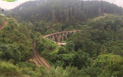Ella – Little Adam's Peak (1.146 m) – Nine Arches Bridge