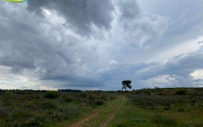 Sariegos – Camino de los Reviriegos – Camino de las Rozas – Camino del Monte – Camino de los Llanos – Lorenzana – Pobladura – Camino de las Pozas