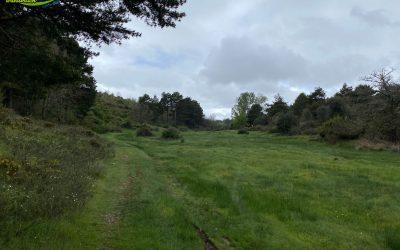 Sariegos – Camino del Mar – Camino del Monte – Camino de los Llanos – Camino de Confurciello – Pobladura