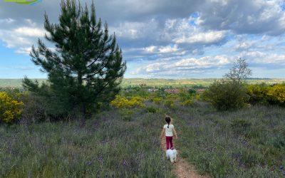 Sariegos – Camino del Mar – Camino de las Mulas – Pobladura – Camino de la Cuesta
