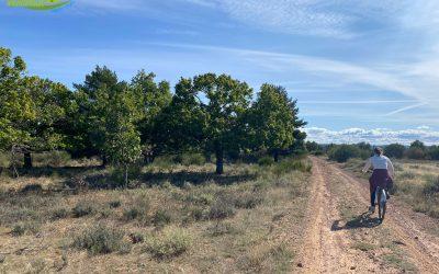 Sariegos – Pobladura – Lorenzana – Campo y Santibáñez – Carbajal de la Legua – Azadinos